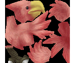 Chocobo (Red)